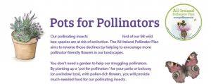 Pots for Pollinators Small
